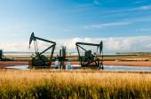 Twin pump jack — Foto de Stock