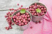 Assembled gooseberries — Stock fotografie
