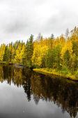 Autumn landscape. River in North Karelia — Stockfoto