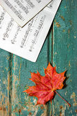 Autumn Melody — Stock Photo