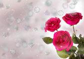 Tres rosas — Foto de Stock