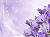 Lilac bells — Stock Photo