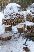 Stack of firewood. — Stock Photo