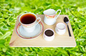 Fresh World-Renowned Ceylon Black Tea — Stock Photo