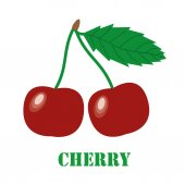 Cherries isolated object vector — Stock Vector