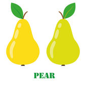 Pear isolated object vector — Stock Vector