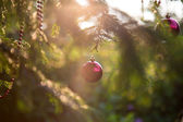 Christmas decorations at sunset — Stock Photo