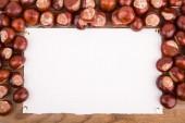 Autumn frame from chestnut — Stock Photo
