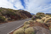 El teide road — Foto de Stock