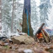 Campfire in winter forest — Stock Photo #59307767