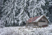 Winter abandoned house of shepherds — Stock Photo