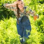 Gardener with bunch of carrots — Stock Photo #61721355
