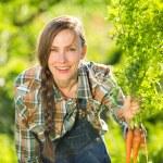 Gardener with bunch of carrots — Stock Photo #61721367
