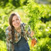 Gardener with bunch of carrots — ストック写真