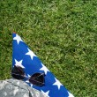 American flag on the grass — Stock Photo #63723479