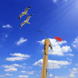 Detail sailboat mast with wind directional indicator — Stock Photo #55235277
