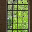 Iron, steel, sprout, plant window — Stockfoto #57999975