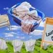 Antique Laundry — Stock Photo #63370621