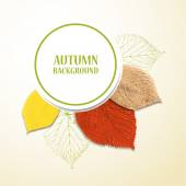 Autumn background with leaves. Linden and cherry. Vector illustration. Eps 10 — Stock Vector