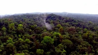 Fog over the tropical forest. Flying over the African jungle — Stock Video