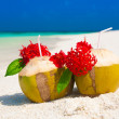 Maldives, coconuts red flowers — Stock Photo #63817461