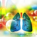 Human lungs pulmonary system — Stock Photo #68933557