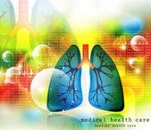 İnsan akciğer akciğer sistemi — Stok fotoğraf