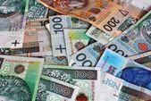 波兰货币 — 图库照片
