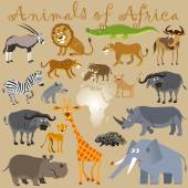Funny wild animals of Africa — Stock Vector
