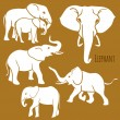 Set of African elephants in various poses. — Stock Vector #53180715