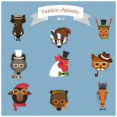 Fashion Hipster Animals set 3 — Stock Vector