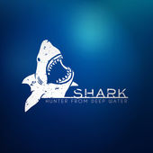 Shark concept — Stock Vector