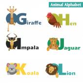 Cute Animals alphabet — Stock Vector