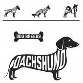 Isolated dog breed silhouettes set with names of breeds inside on white baclground. — Stock Vector