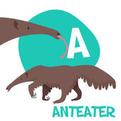Funny cartoon animals vector alphabet letter set for kids  A is anteater. — Stock Vector