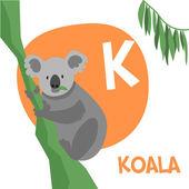 Funny cartoon animals vector alphabet letter set for kids. K is Koala.   — Stock Vector