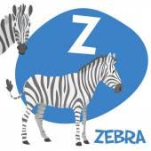 Funny cartoon animals vector alphabet letter set for kids. Z is zebra   — Stock Vector