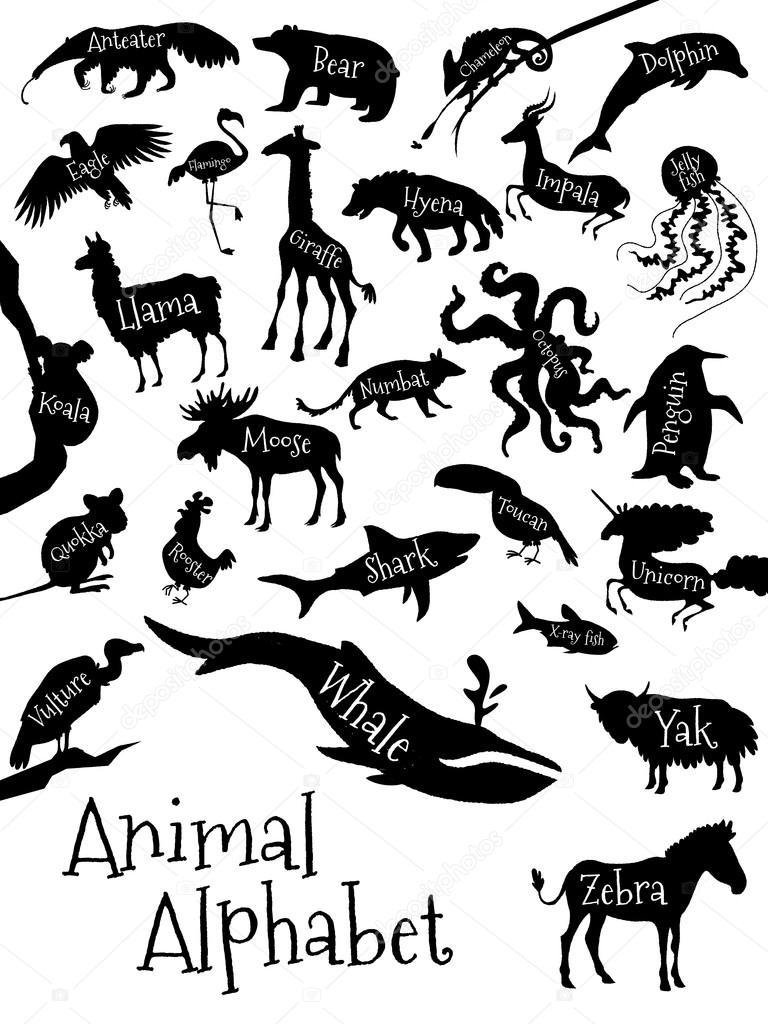 _76479589-Animal-alphabet-poster-for-children.-Animal-silhouettes ...