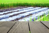 Defocused and blur image of terrace wood and agriculture life fo — Stock Photo