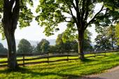 Beautiful landscape on a ranch — Stock Photo