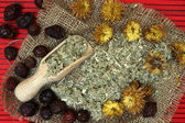 Traditional herbal medicine ingredients. — Stock Photo