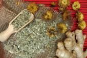 Traditional  herbal medicine. — Foto de Stock