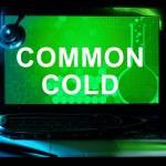 ������, ������: Common cold Acute viral rhinopharyngitis Acute coryza