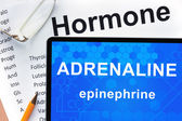 Papers with hormones list and tablet  with words adrenaline (epinephrine)  . — Stock Photo
