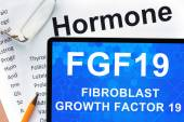 Papers with hormones list and tablet  with words  fibroblast growth factor 19 (FGF19) . — ストック写真