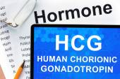 Papers with hormones list and tablet  with words  Human chorionic gonadotropin (HCG) . — Zdjęcie stockowe