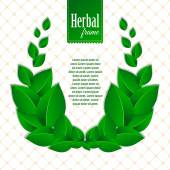 Herbal eco wreath of natural green leaves — 图库矢量图片