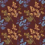 Herbarium plants background — Stock Photo #56594495