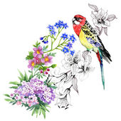 Colorful parrot with flowers — Stock Photo