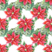 Red Poinsettia seamless pattern — Stock Photo